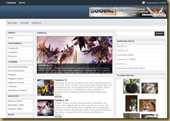 schemermag wordpress theme
