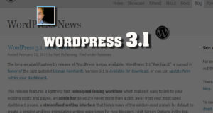 wordpress3.1