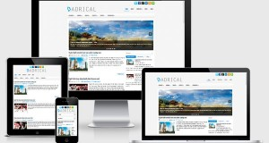 adrical-wordpress-theme