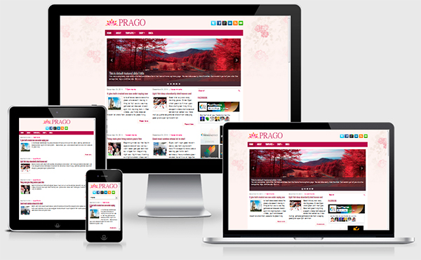 prago-wordpress-theme