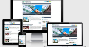 trendo-wordpress-theme