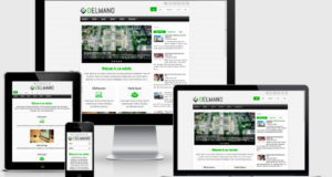 delmano-wordpress-theme