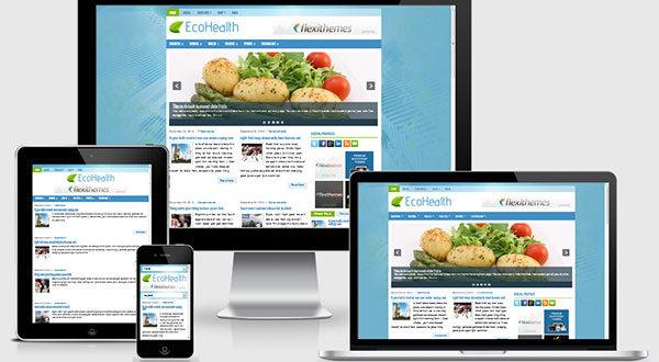 ecohealth-wordpress-theme