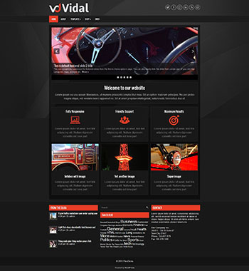 vidal-wordpress-theme-full