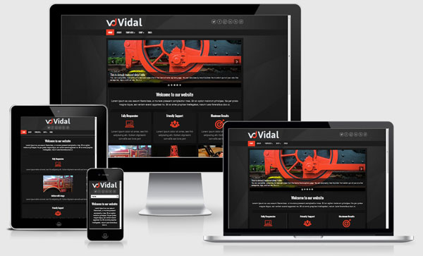 vidal-wordpress-theme