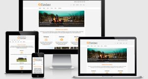 премиум тема wordpress Timber